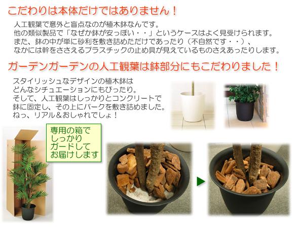 リアル人工観葉 REAL Artifical Plant