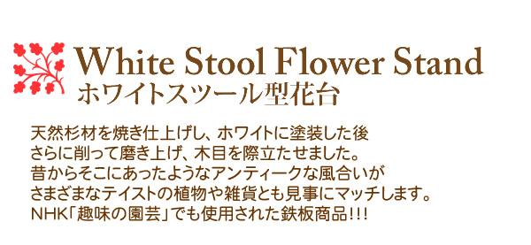 White Stool Flower Stand ホワイトスツール型花台 天然杉材を焼き仕上げし、ホワイトに塗装した後さらに削って磨き上げ、木目を際立たせました。昔からそこにあったようなアンティークな風合いがさまざまなテイストの植物や雑貨とも見事にマッチします。NHK「趣味の園芸」でも使用された鉄板商品!!!